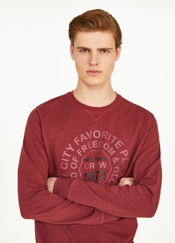 Solid colour 100% cotton sweatshirt with print
