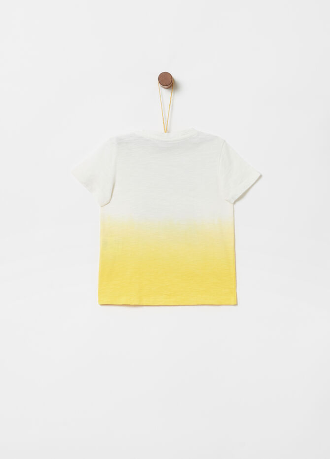 Organic cotton degradé T-shirt with print