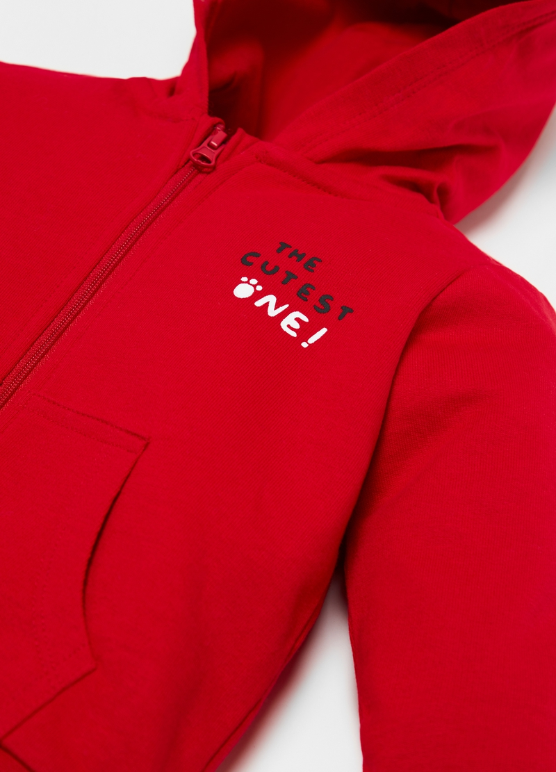 100% organic cotton hoodie image number null