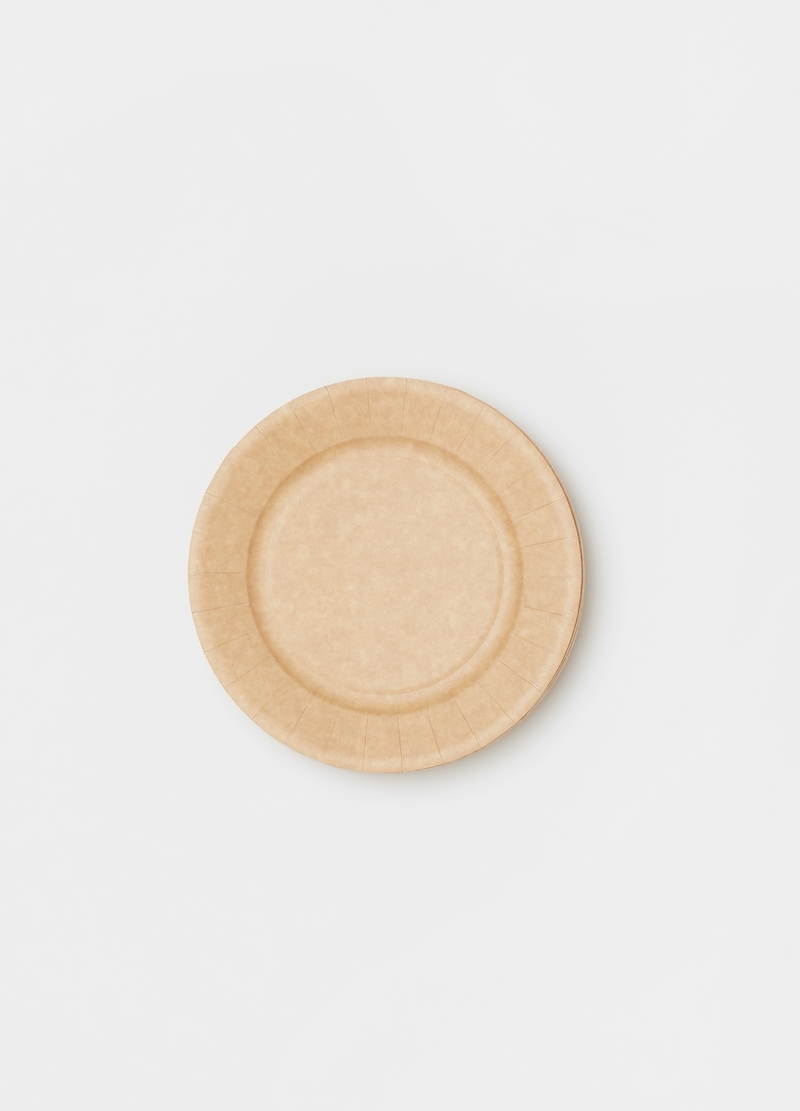 50 plates in compostable cardboard image number null