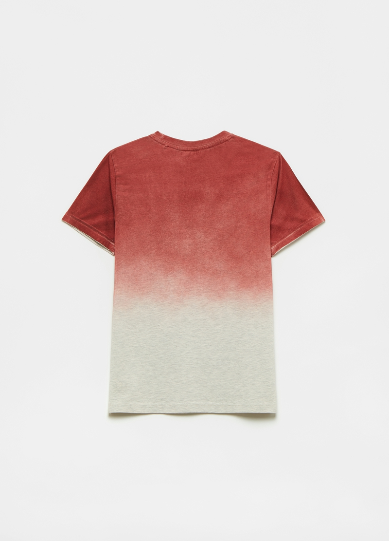 Two-tone T-shirt with lettering image number null