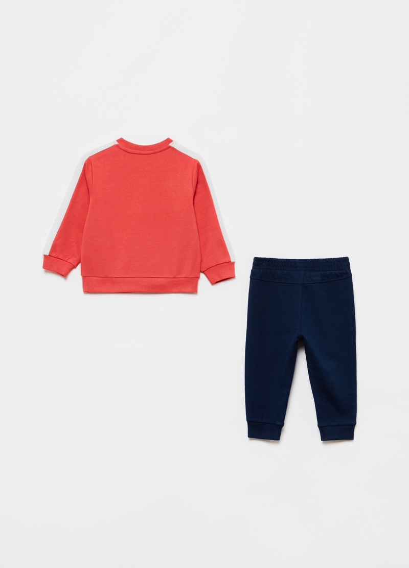 Jogging set in 100% organic cotton with lion cub print image number null