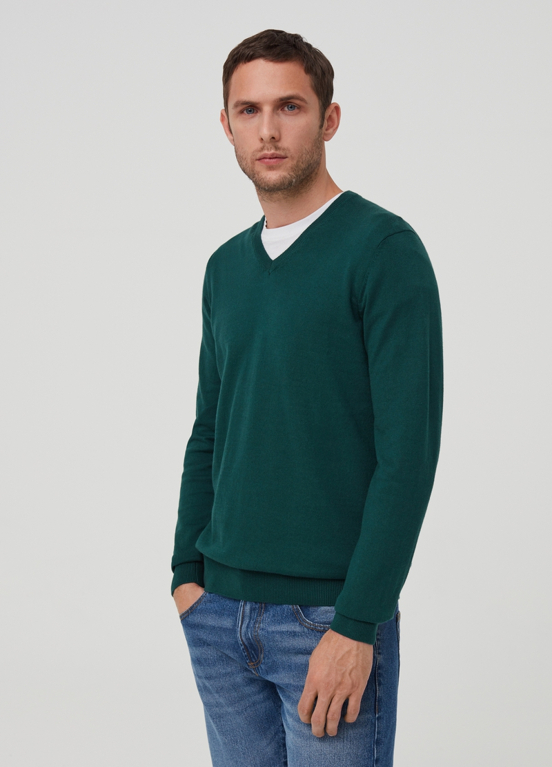 Pullover puro cotone image number null