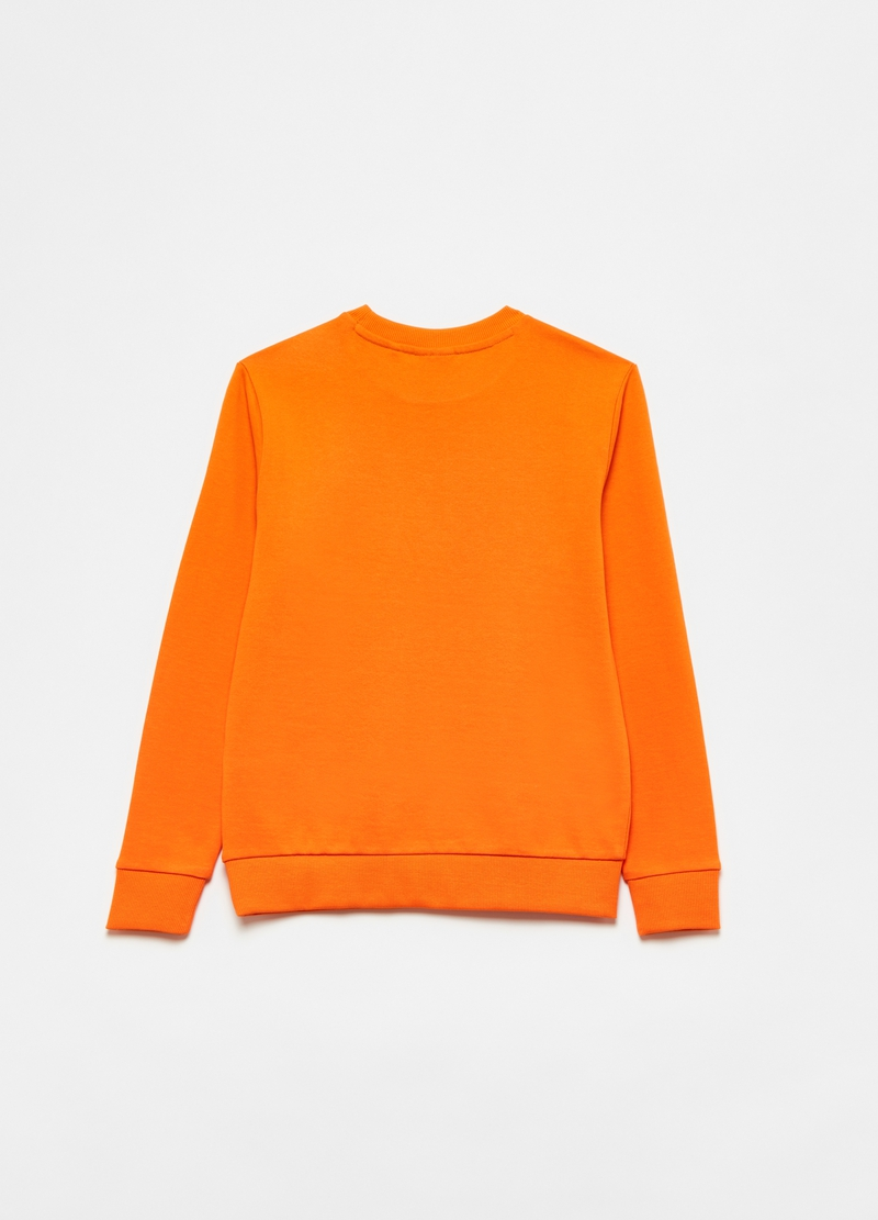 100% cotton sweatshirt with detail at the neck image number null